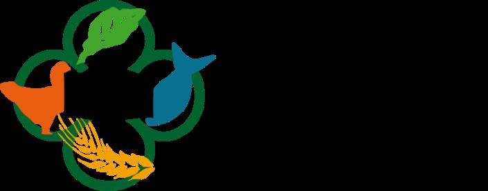 BFN-logo-COLOURS
